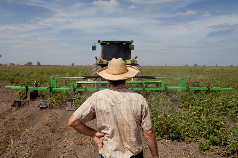 Eric Herm, 36, in one of his cotton fields. Eric Herm farms 6,700 acres of dry land cotton with this father and Eric is growing 250 acres of certified organic cotton which he is most proud of.