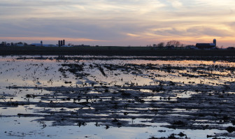 Flooded fields like this one from Calumet County, in May 2013, are innocuous when the ground below is clay, which protects the aquifers below. But if there are karst features like cracks or sinkholes, flooding means more risk that agricultural chemicals or manure will get into the groundwater below.
