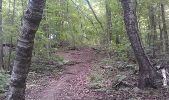 This hiking trail at Mt. Hosmer City Park in Lansing is an example of an outdoors tourist attraction Allamakee County residents say large frac sand mining operations could jeopardize. Taken Aug. 17, 2014.