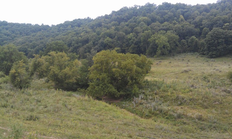 Allamakee County residents who fought to limit the size of frac sanding mines in their northeast Iowa county say they want to preserve ecological features such as the rolling hills and karst topography that mark the region.