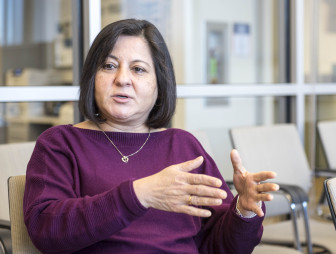 University of Illinois at Urbana-Champaign professor Madu Khanna on Feb. 2, 2015. Khanna is a distinguished professor in environmental economics in the Department of Agricultural and Consumer Economics.