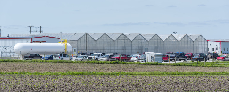A Monsanto facility in Jerseyville, Ill., on May 19, 2015. Data shows the St. Louis-based seed company has secured more USDA-petition approvals than any other company or institution.