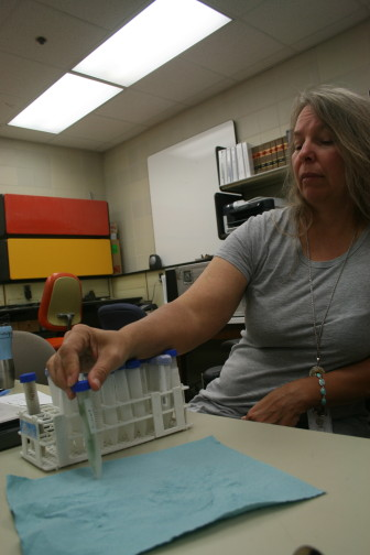 Mary Skopec, of the Iowa DNR's beach monitoring program, looks at a water sample from Black Hawk Lake in her lab July 30, 2015. The sample tested high, with microcystin concentrations above the advisory level of 20 micrograms per liter.
