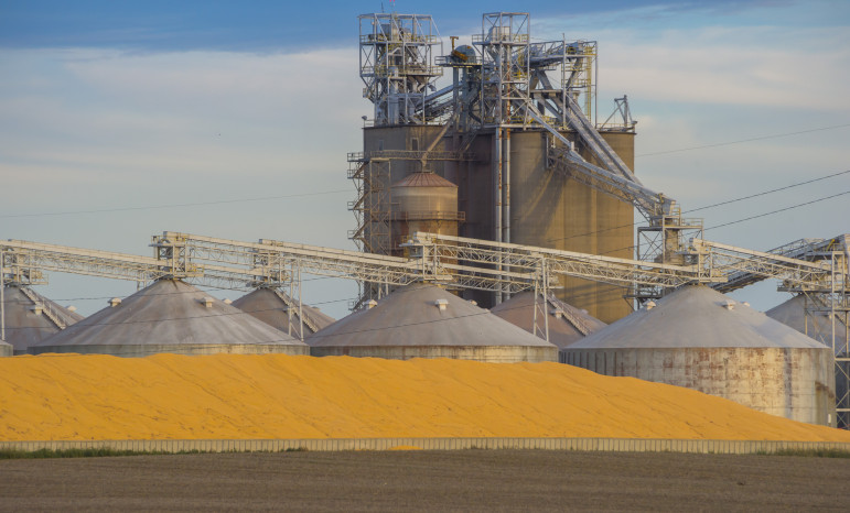 The 2013 corn harvest was, at the time, the top-yielding year on record, according to the U.S. Department of Agriculture. The 2014 harvest broke that record. As yields rose and silos overflowed, grain handlers had to store grain on the ground in large piles.