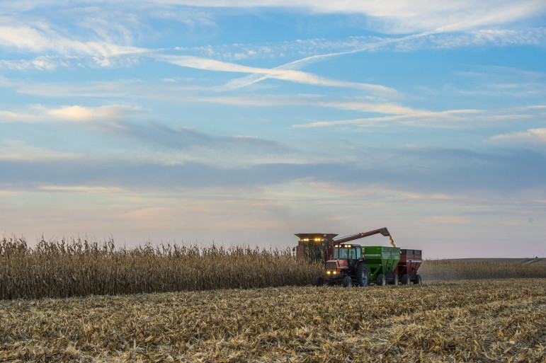 A central Illinois farmer harvests his corn field on a sunny day on Sept. 24, 2015. Many experts believe that the American agriculture industry will gain the most from the Trans-Pacific Partnership trade deal.
