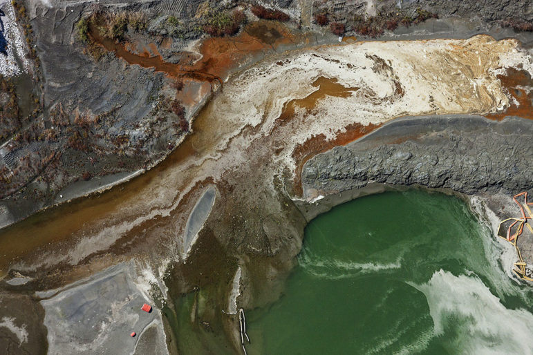 Toxic coal ash in the Emory River after the TVA spill