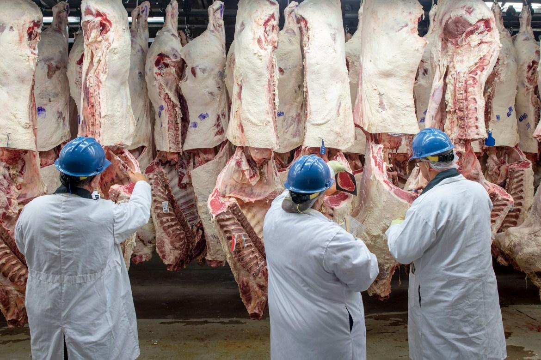 USDA Beef inspectors