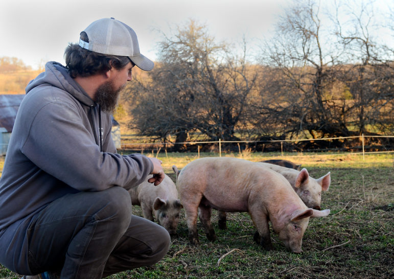 Andrew Geiser pets his pigs.